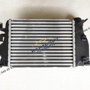 Megane 4 Kadjar 1.5 Dci K9K Turbo Radyatörü 144614EA0A 144614EA1A 144614EA1B