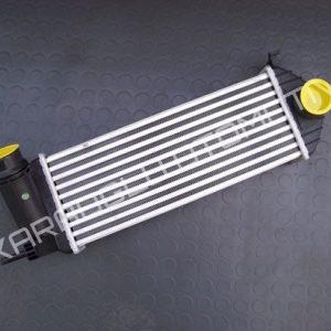 Kangoo 3 Turbo Radyatörü 144963234R